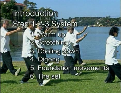 Tai Chi for Beginners (2002, Paul Lam)